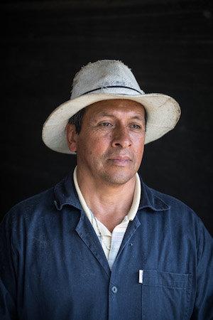 González, Gerber am Rio Bogota