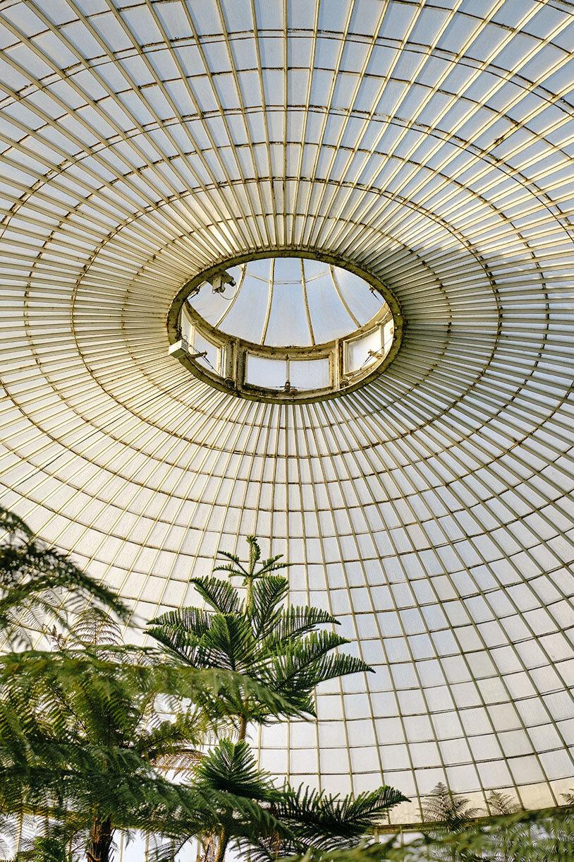 Botanischer Garten (Foto: Samuel Zeller)