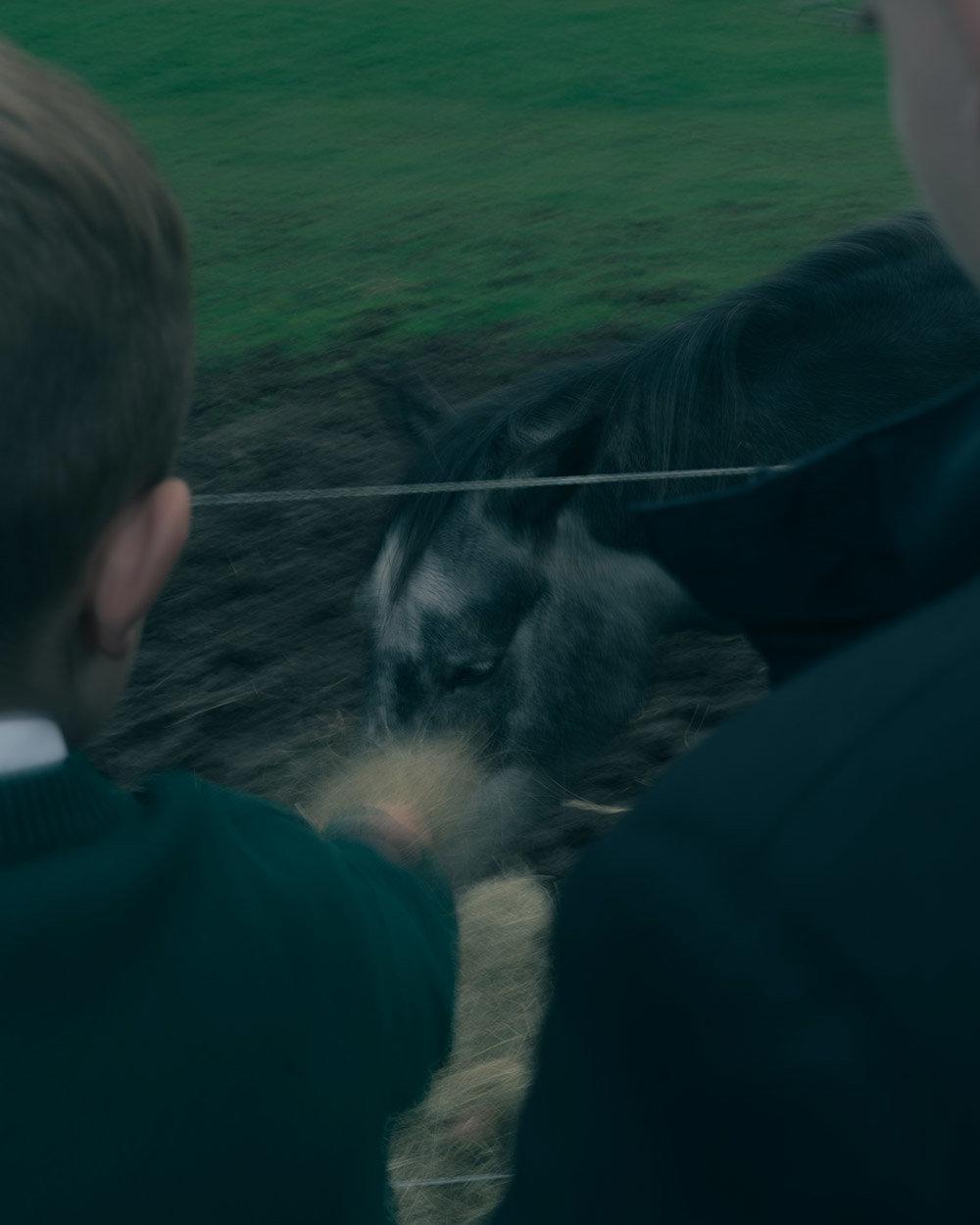 Teenager bei der Pferdetherapie