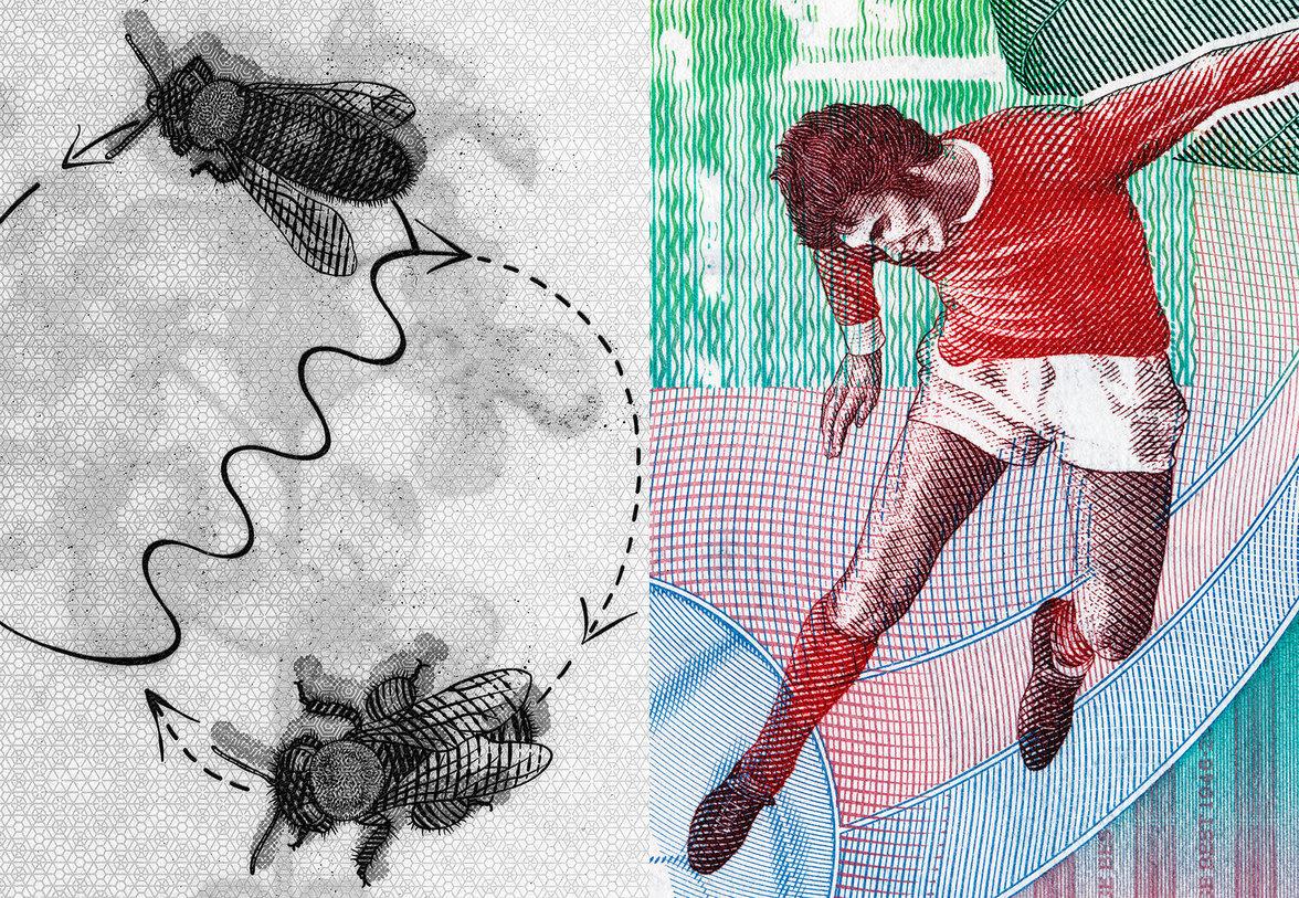 Illustration von tanzenden Bienen und einem Fußballer