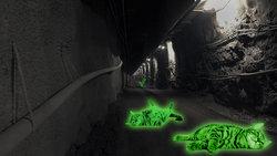 Leuchtende Katzen in Atomlager