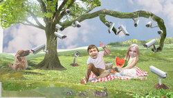 Die Autoren streiten beim Picknick und werden dabei von Überwachungskameras beobachtet