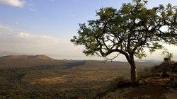 Direkt neben Arba Minch gelegen: Der Nechisar-Nationalpark