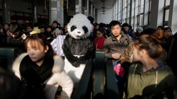 Mann in Pandakostüm sitz in Bahnhof