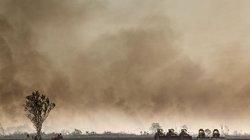 Nach der Brandrodung in einem ehemaligen Waldgebiet im äthiopischen Gambetta ist die Bahn frei für Bulldozer, die den Boden bereiten für den Anbau von Zuckerrohr und Palmöl