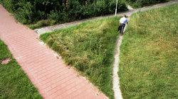 Ein Trampelpfad, der sich zur Abkürzung eines offiziellen Fußweges gebildet hat