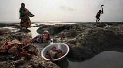 Auf der Suche nach Ziegeln an der überfluteten Küste Bangladeschs (Foto: Andrea Frazzetta/Institute/The New York Times)