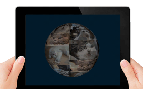 Tablett mit Katzenbildern