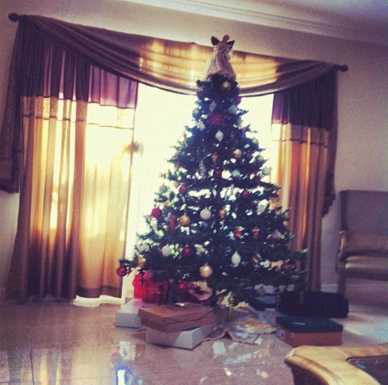 Kourosh Zaris erster Weihnachtsbaum in Shiraz